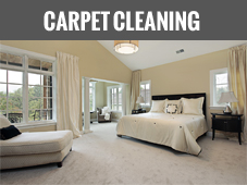 Carpet Cleaning Austin