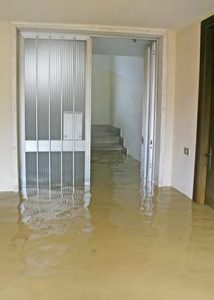Flooded Carpet Cleaning Services